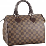 Louis Vuitton Speedy 25 2340